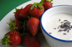 Photo of Lavender Yogurt with Strawberries