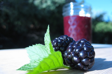 Photo of Blackberry Barbeque Sauce